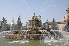 Rosja moscow Wystawa osiągnięcia narodowa gospodarka Kamienna kwiat fontanna Obraz Stock