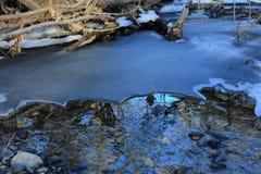 Rosja Rosyjska lasowa wiosna w Rosja piękna natura rzeka w zimie, piękni wzory, jasny woda Obrazy Royalty Free