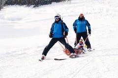 Rosja, Sheregesh 2018 11 17 ratownicy na nartach niosą narciarki która rozbijał drzewo, z łamaną bandażującą nogą w kołysce zdjęcia royalty free