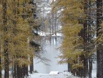 Rosja Spacer wokoło Moskwa Zima fotografia stock