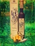 Rosjanina Lodowy wino fotografia stock