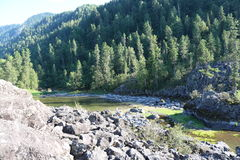 Rosjanina Syberia góra Altai Zdjęcia Royalty Free