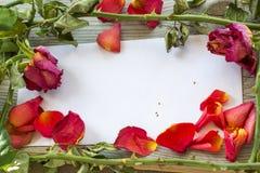 Roskronblad och flera vissna rosor är på papperet Royaltyfri Fotografi