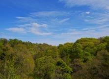 Roslin Glen. UK, Scotland, Midothian, Edinburgh Area, Landscape of Roslin Glen royalty free stock photography