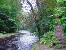 Roslyn Glen, Schottland lizenzfreie stockfotografie