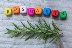 Rosmarin in german Rosemary with letter cube concept against g Royalty Free Stock Photos