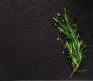 Rosmarin på stenbakgrund med någon krydda Royaltyfri Bild