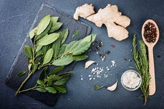 Rosmarini e mazzo e spezie della baia Fotografia Stock Libera da Diritti