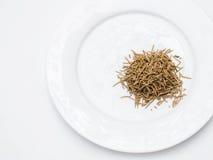 Rosmarini sul piatto bianco. Immagini Stock