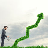 Rosnąć gospodarki firmy Obrazy Stock