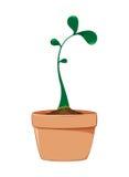 rosnące rośliny royalty ilustracja