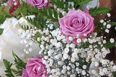 Rosor, färg och harmoni Royaltyfri Bild