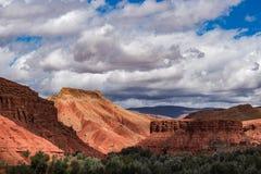 Rosor för den härliga Rose Valley - Vallee desen, nära Ouarzazate, Marocko fotografering för bildbyråer