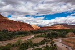 Rosor f?r den h?rliga Rose Valley - Vallee desen, n?ra Ouarzazate, Marocko arkivbilder