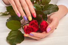 Rosor i händer med perfekt manikyr Arkivbilder