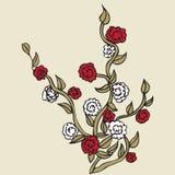 Rosor med röda kronblad på vit bakgrund royaltyfri illustrationer