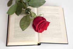 Rosor och böcker Royaltyfri Bild