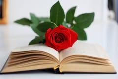 Rosor och böcker Arkivbild