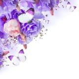 Rosor och fjäril, blom- bakgrund Arkivfoton