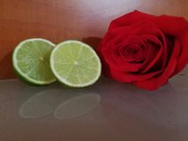 Rosor och frukter Royaltyfri Bild