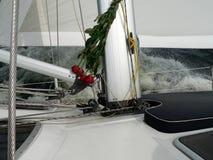 Rosor och segling Arkivbild