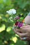 Rosor och trädgårdblommor Arkivbild