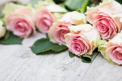 Rosor på en träbakgrund Royaltyfri Foto