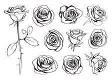 Rosor räcker den utdragna uppsättningen vektor Stock Illustrationer