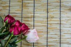 Rosor som förläggas på vävde rullgardiner 1 för ett trä Arkivbild
