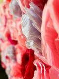 Rosor som g?ras av papper origami royaltyfri foto