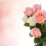Rosor till bröllopdagen Royaltyfria Bilder