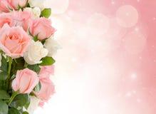 Rosor till bröllopdagen Fotografering för Bildbyråer