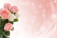 Rosor till bröllopdagen Royaltyfri Foto
