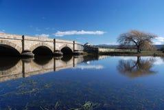 Ross-Brücke Lizenzfreie Stockfotos