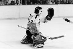 Ross Brooks, Boston Bruins. Stock Photography
