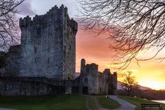 Het kasteel van Ross bij zonsondergang. Killarney. Ierland Stock Foto