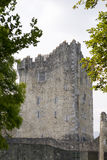 Ross castle in killarney county kerry Royalty Free Stock Photos