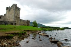 Ross castle. Killarney National Park. County Kerry, Ireland. Ross Castle is a 15th-century tower house and keep on the edge of Lough Leane, in Killarney National Stock Photos