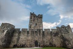 Ross castle in killarney. Stone architecture of ross castle in killarney Royalty Free Stock Photography