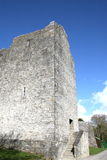 Ross castle ruins, killarney, ireland Royalty Free Stock Photo