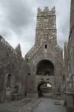 Ross Errilly Friary Stock Photography