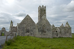Ross Errilly Friary Stock Images