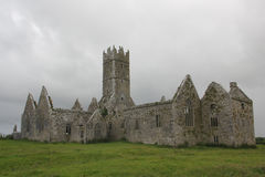 Ross Errilly Friary Royalty Free Stock Photo