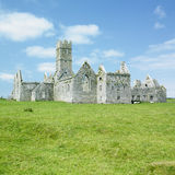 Ross Errilly Priory Royalty Free Stock Image