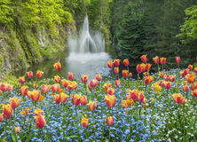 Ross Fountain in Butchart Gardens. In the spring stock photography