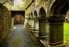 Ross Friary Stock Photography