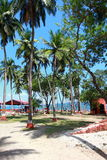 Ross Island, Andamans, India. Ross Island, Andamans in India stock photo