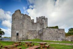 Ross kasztel, Irlandia zdjęcia stock