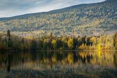 Ross Lake - couleurs d'automne de Canada du nord photographie stock libre de droits