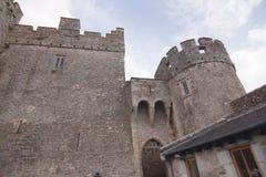 Ross slott Caislean Ross Killarney Ireland Arkivfoto